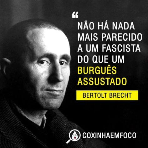 fascismobertolt